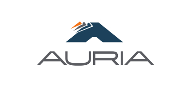 Auria Solutions Slovakia